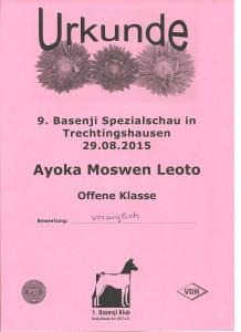 Spezialschau Trechtingshausen